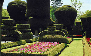 Levens Hall Topiary Garden
